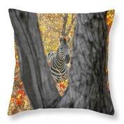 Zebra In Mopane Textures Throw Pillow
