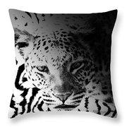 Zebra Kill Throw Pillow