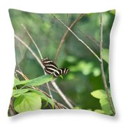 Zebra Longwing Butterfly About To Take Flight Throw Pillow