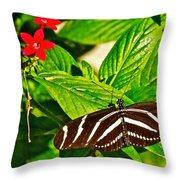 Zebra Longwing Butterfly In Living Desert Zoo And Gardens In Palm Desert-california  Throw Pillow