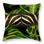 Zebra Longwing Butterfly On A Sanchezia Nobilis Tropical Plant Throw Pillow