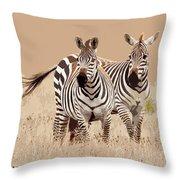 Zebra Pair Throw Pillow