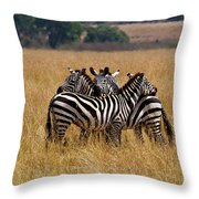 Zebra Protect Each Other Throw Pillow