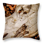 Zebra Skull Throw Pillow