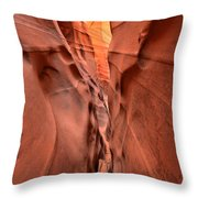 Zebra Slot Canyon Glow Throw Pillow