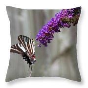 Zebra Swallowtail Butterfly 2 Throw Pillow