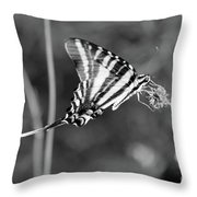 Zebra Swallowtail Butterfly Black And White Throw Pillow