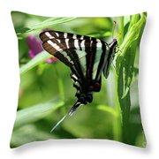 Zebra Swallowtail Butterfly In Green Throw Pillow