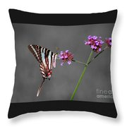 Zebra Swallowtail Butterfly With Verbena Throw Pillow