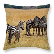 Zebra Togethering Throw Pillow