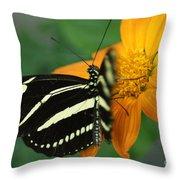 Zebra Wing Profile...   # Throw Pillow