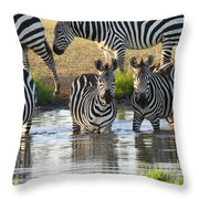 Zebra15 Throw Pillow