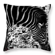 Zebra2 Throw Pillow