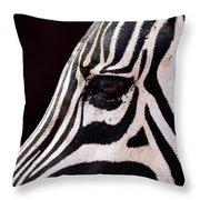 Zebras Eye Throw Pillow