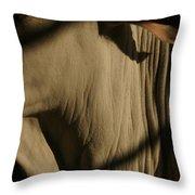Zebu Throw Pillow