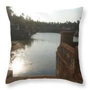 zee Throw Pillow