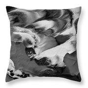 Zen Abstract Series N1015al Throw Pillow