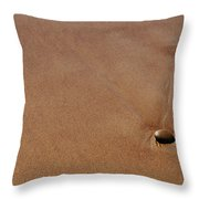 Zen At The Beach Throw Pillow