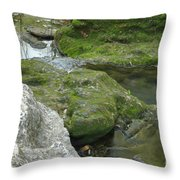 Zen Creek Rocky Scenery Throw Pillow