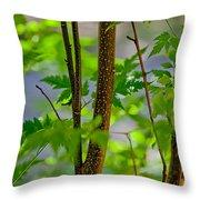 Zen Forest Throw Pillow