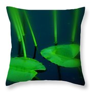 Zen Photography Green  Throw Pillow