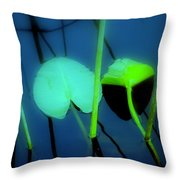 Zen Photography IIi Throw Pillow