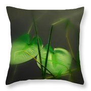 Zen Photography Iv Throw Pillow