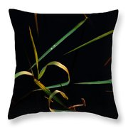 Zen Photography Throw Pillow