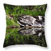 Zen Pool Throw Pillow