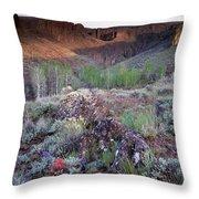 Zeno Canyon Throw Pillow