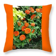 Zesty Zinnias Throw Pillow