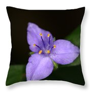 Zigzag Spiderwort Throw Pillow
