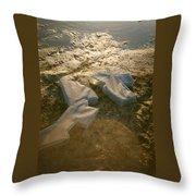 Zinc Sculptures On The Beach At Sunset Throw Pillow