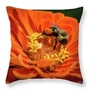 Zinnea With Honeybee Throw Pillow