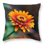 Zinnia Flowers Throw Pillow