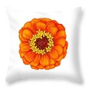 Zinnia In Orange Throw Pillow