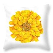 Zinnia In Yellow Throw Pillow