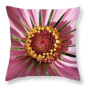 Zinnia - Natural Mandala Throw Pillow