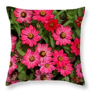 Zinnia Riot Watercolor Throw Pillow