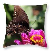 Zinnia Visitor 4 Throw Pillow
