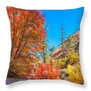 Zion Autumn Colors Throw Pillow