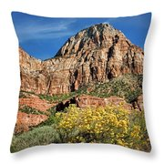 Zion Canyon - Navajo Sandstone Throw Pillow