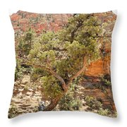 Zion Hike 1 View 1 Throw Pillow