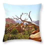 Zion Hike 1 View 4 Throw Pillow