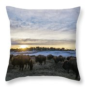 Zion Mountain Ranch Buffalo Herd Throw Pillow
