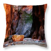 Zion Narrows With Boulder Throw Pillow