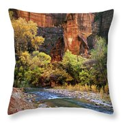 Zion National Park 57 Throw Pillow