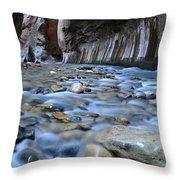 Zion National Park Narrows Throw Pillow