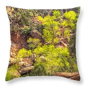 Zion National Park Small Tributary Of The Virgin River Throw Pillow