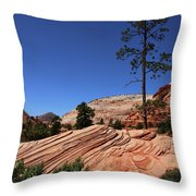 Zion Park Colors And Texture Throw Pillow